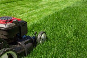 Do You Mow Your Own Grass?